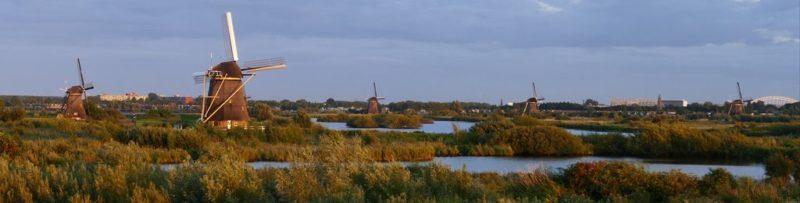 Kinderdijk und Rotterdam 🚙🇳🇱📷
