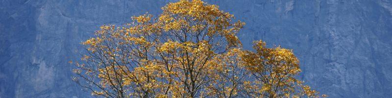 Karwendel im Herbst